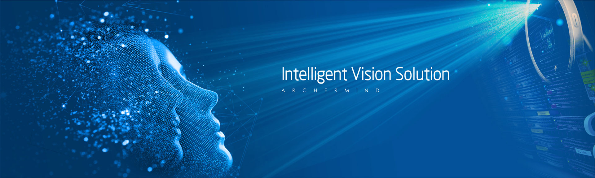 inteligent vision solution_en